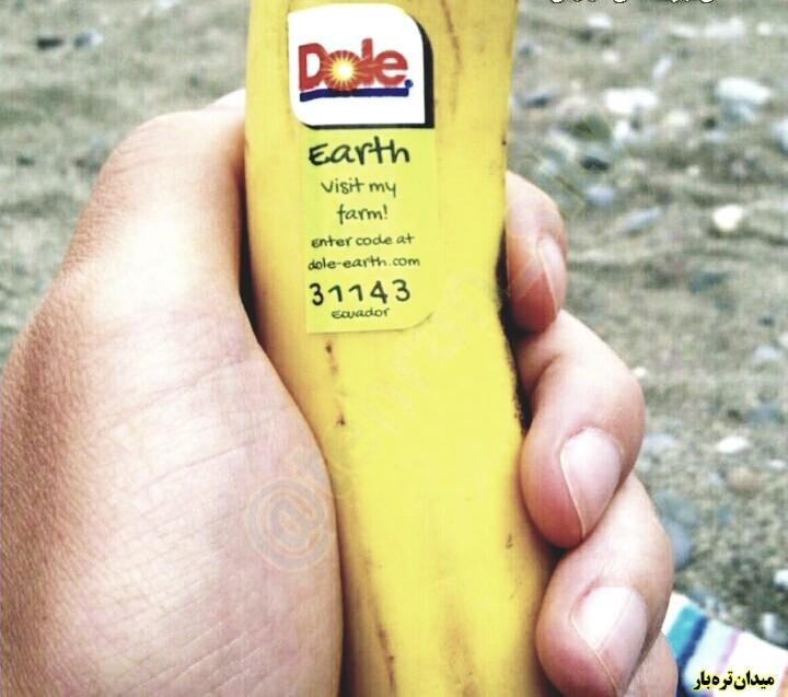 تصویر شماره آیا میدونستید اگه عدد روی برچسب میوه های وارداتی با ۳ یا ۴ شروع بشه یعنی از مواد شیمیایی استفاده شده ؟